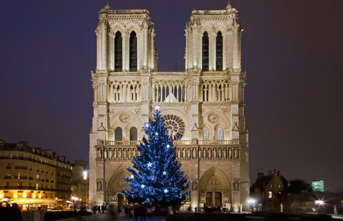 2. Hundreds of lights decorate a Christmas tree outside the famous Notre Dame Cathedral