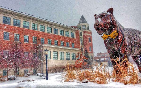 #Snowbowtiger on the Quad. Photo credit  @MUCrosbyMBA's Kevin Nielson